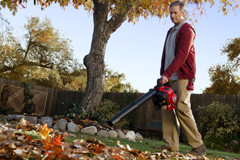 Fall Seasonal Tips